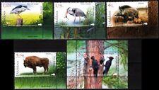 MOLDOVA 2018-04 FAUNA Birds Boar Bison. National Park. Corner set & S/Sheet, MNH