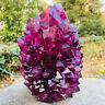 Purple Alunite crystallization crystal cluster specimen point obelisk 1pc pm320