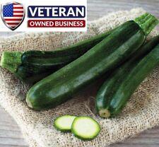 Summer Squash Black Beauty 35+ Heirloom Non GMO Vegetable seeds Zucchini Seeds