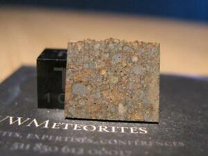 NWA 12464 - One of the only 7 Meteorites Classified LL3.15