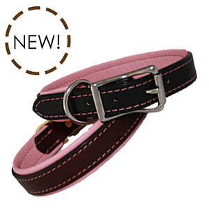 New Auburn Leathercrafters Dog Pet Padded Leather Collars Black and Burgundy