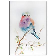 Colorful Bird Wall Art Modern Watercolor Rainbow Birds Artwork Metal Giclée