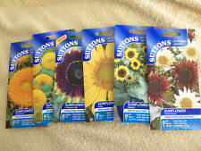 JOB LOT OF 6 ALL DIFFERENT TYPES OF SUTTON SUNFLOWER SEEDS ONLY £3.HAVE SOME FUN