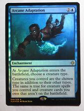 Arcane Adaptation Foil     Mtg Magic English NM