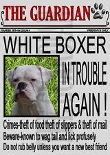 Handmade Boxer Laminated Signs & Plaques