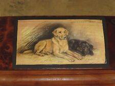 """Pair Of Labrador Retrievers Image On 10"""" x 4"""" Thuya Burl Wood Hinged Box, U.S.A."""