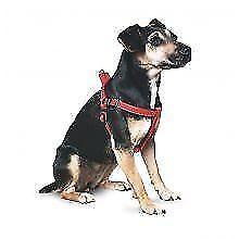 Articles noirs Ancol en tissu pour chien