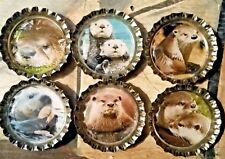 Six Cute Otter Images on Silver Bottle Caps with Magnets
