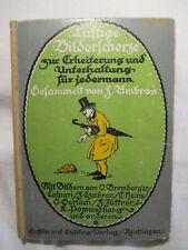 Libro-divertidas bilderscherze F. Ambros, para 1910, ilustradas