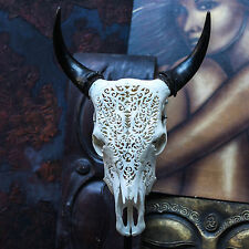 REAL HAND CARVED COW SKULL &HORNS Taxidermy buffalo antlers longhorns steer bull