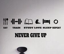 Life Motivational Vinyl Decal Never Give Up Sticker Gym Sport Art Decor 14(nse)