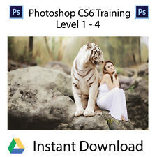 Adobe PhotoShop CS6 Level 1-4 Professional Training Videos - Instant Download