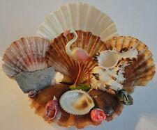 1960's Tropical Shell Flamingo Coral Tourist Sea Shore Ocean Large Souvenir