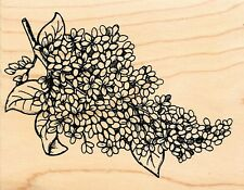 Great Impressions ~ FLOWER BRANCH ~ Wood Mounted Rubber Nature Flowers Spring