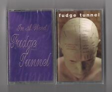 FUDGE TUNNEL - Lot of 2 SEALED cassettes - In a word & Complicated EARACHE