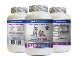cat dental care solution - CAT TEETH AND GUM HEALTH 1B - cat vitamin b