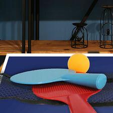 Home Office Entertainment Desktop Table Tennis Mini Portable Set Pressure Relief