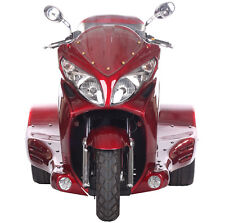 FREE SHIP~NEW 300cc Motor Trike Tricycle 3 Wheeler Motorcycle Gas Scooter ZODIAC
