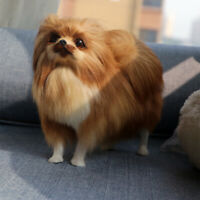 Lifelike Realistic Pomeranian Dog Model Toy Plush Doll Animal Craft Ornament