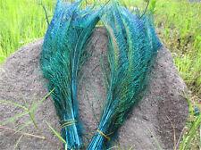 5Stk.left+5Stk right    Pfauenfedern Federn Pfauen Pfauenfeder 30-35cm Aqua blau