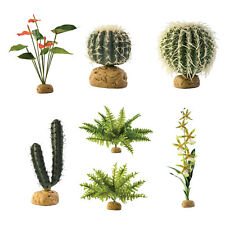 Exo Terra Plants - Cactus Orchid Anthurium Boston Fern Artificial for Terrariums