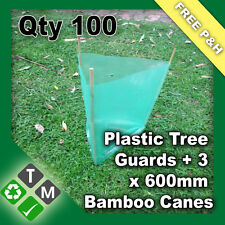 100 X Plastic Tree and Plant Guard Protection Sleeves & 300 X 600mm Bamboo Canes