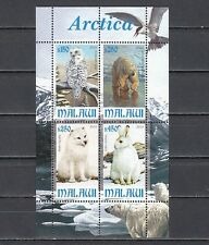 Malawi, 2010 Cinderella issue. Antarctica Fauna, Owl shown on a sheet of 4.