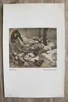 Kunstdruck 1 Blatt 1905/06 Hühner Fütterung Enten nach Gemälde R. Schramm Zittau