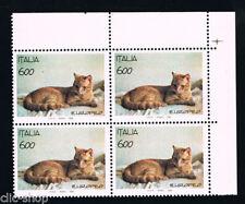 ITALIA 1 QUARTINA ANIMALI GATTO RAZZA EUROPEA 1993 nuovo**