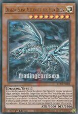 Yu-Gi-Oh!Dragon Blanc Alternatif aux Yeux Bleus : UR LDS2-FR008