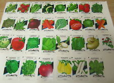 Lot of 30 Old Vintage - VEGETABLE - SEED PACKETS - San Antonio Texas - EMPTY