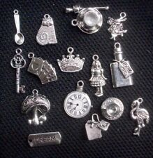 15 Alice in Wonderland Assorted Charms Silver Tone