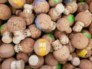 100 (Patron Tequila Assorted Size Corks) Straight from the Bottle- Great 4 Craft