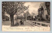 Thomasville GA, Street Scene, Georgia Vintage Postcard