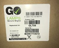 Go Lamps EC. K2400.001Modul für Acer P7200i Projektor Lampe # 3.1