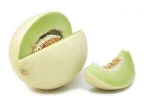 ROCKMELON 'Honeydew' 20 seeds GREEN FLESH melon vegetable garden fruit HEIRLOOM