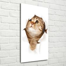 Wand-Bild Kunstdruck aus Acryl-Glas Hochformat 70x140 Katze