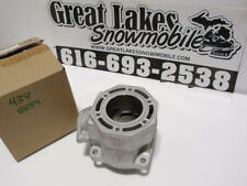 Arctic Cat 440 438cc 88B4 Snowmobile Engine New Reman. Cylinder, Core Required