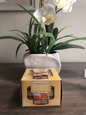 Yankee Candle HONEYCRISP APPLE CIDER Box 12 Scented Tealights Tea Light Yellow