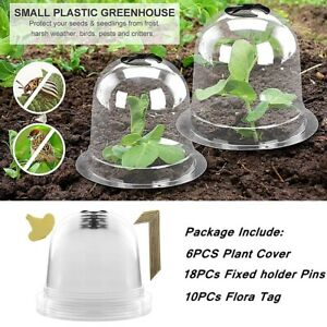Tag Plant Guard Cover Dome Plant Bell Plant Bell Protector Mini Greenhouse