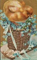 Antique Easter Postcard 'Easter Greetings' Big Fluffy Chick Basket Forget-me-Not
