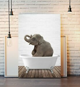 Elephant Animal in Bath CANVAS WALL ART PRINT ARTWORK PICTURE FRAMED POSTER