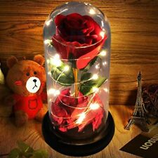 Beauty And The Beast Red Rose Valentine's Eternal Rose Flower LED Light Gift