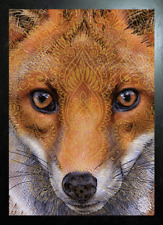 BLACK FRAMED FOX FACE IMPRINT - 3D PICTURE 465mm X 365mm (NEW)