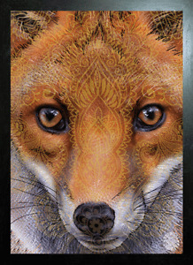 BLACK FRAMED FOX FACE IMPRINT - 3D PICTURE 425mm X 325mm (NEW)