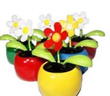 HAAC 2er Set Solar Wackelblume Blume
