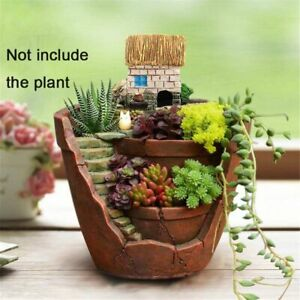 Basket Trough Box Bed Herb Succulent Plant House Planter Flower Pots Garden Sky