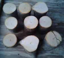 "9 Hand Select Green Fresh Cut Apple Wood Smoker Bbq Grilling Craft 3 1/2"""