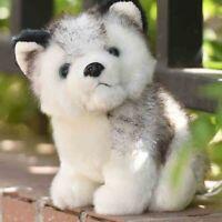 1PC Cute Husky Dog Plush Toy Stuffed Animal Soft Wolf Pet Doll Kid Toy Gift 20CM