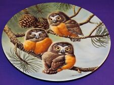 Baby Owls Of North America Porcelain Plate Forty Winks Saw-Whet Owls 2Nd Issue